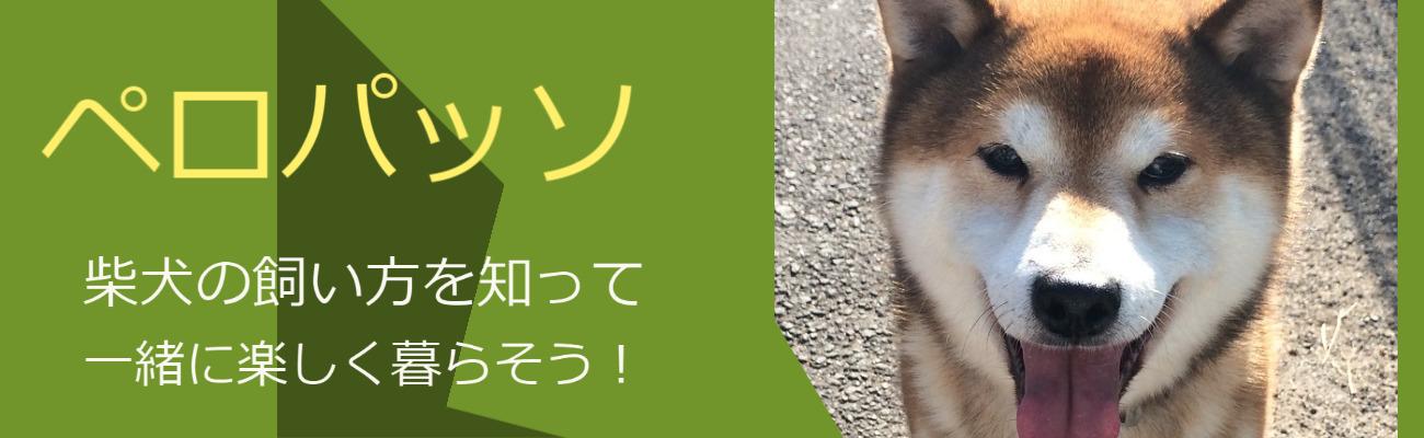 〜ペロパッソ〜 柴犬の飼い方を知って一緒に楽しく暮らそう!
